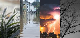 Image of Four Climates. First is frost on grass, second is a flooded high street, third is a thunder storm, and fourth is a tree during a drought