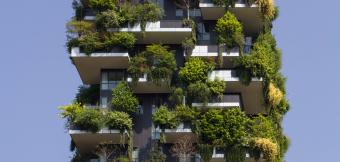 High Rise building using green roof technology