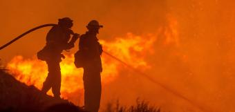 Firefighters use a hose to control a wildfire
