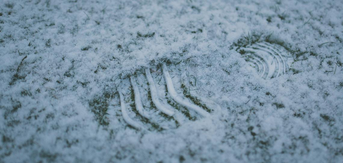 Shoe footprint in the snow on grass