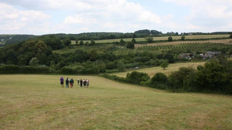 People walking in a field is farm and field lands in the background