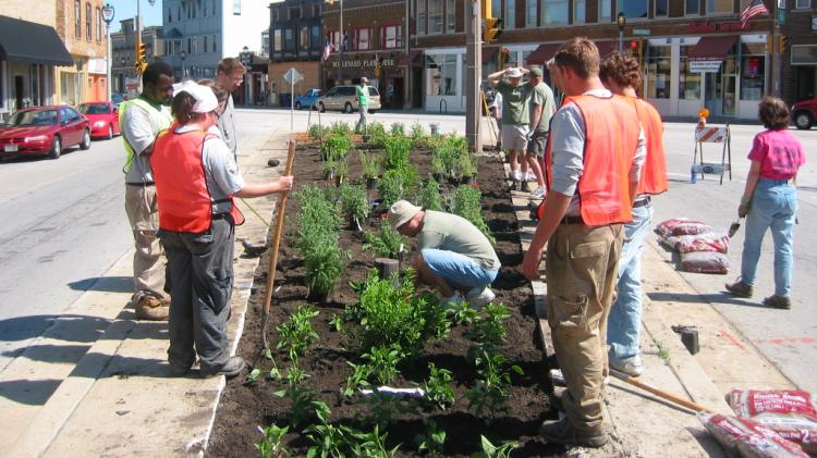 People planting plants in a town square